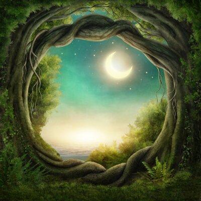 Naklejka Zaczarowana ciemny las