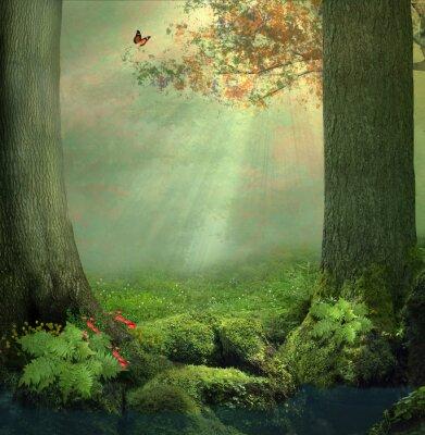 Naklejka Zaczarowany las