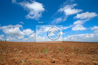 Zaorane pole z pięknym błękitne niebo