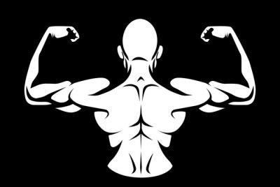 Naklejka Zdrowy człowiek zdjął koszulę wyginanie jego mięśnie pleców na ciemnym tle
