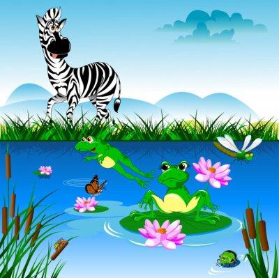 Naklejka Zebra na podlewanie