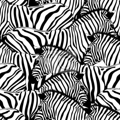 Naklejka Zebra szwu ornament pattern.Savannah Zwierząt. Dzikie tekstury zwierząt. Paski czarno-białe. zaprojektować modne tkaniny tekstury, ilustracji.