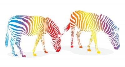 Naklejka zebra1207c
