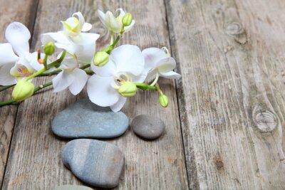 Naklejka Zen kamienie i Orchidea