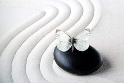 Naklejka Zen stone z motylem