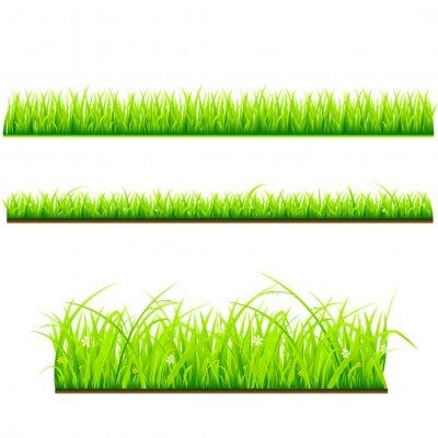 Naklejka Zestaw 3 różnych rodzajów traw