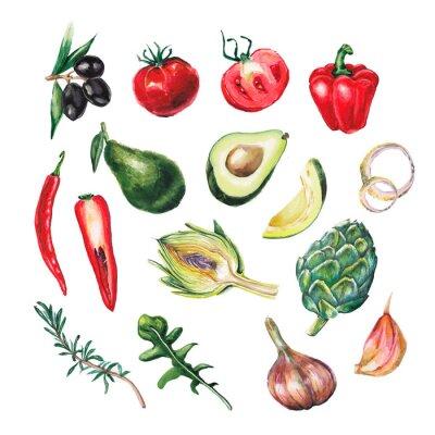 Naklejka zestaw akwarela duże warzywa