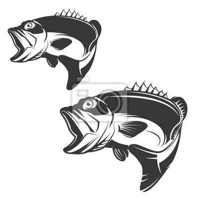 Zestaw ikon bass ryby na białym tle.