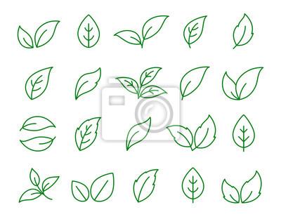 Naklejka zestaw ikon liniowy zielony liść na białym tle