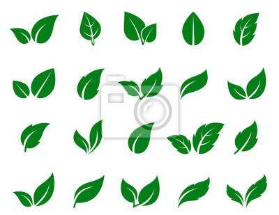 Naklejka zestaw ikon zielony liść