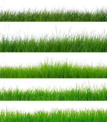 Naklejka zestaw zielonej trawie
