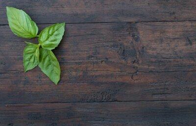 Naklejka zielona bazylia