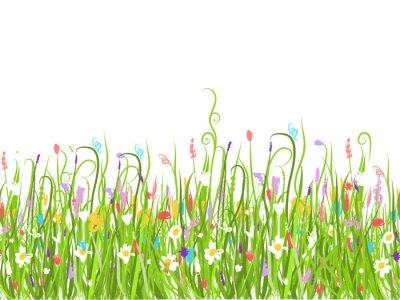 Naklejka Zielona łąka, bez szwu do projektowania
