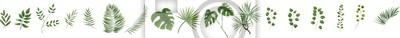 Naklejka zielone liście w stylu akwareli