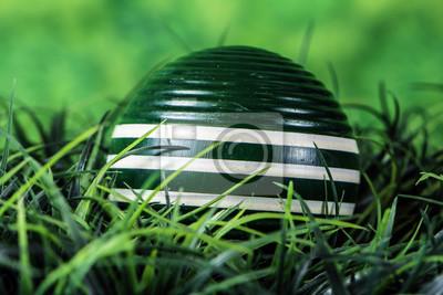 zielone paski drewniane krokiet piłka w zielonej trawie z zielonym tle