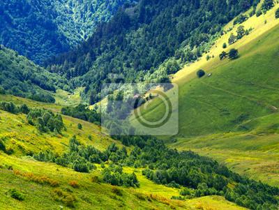Naklejka Zielone wzgórza w dolinie górskiej. Piękny krajobraz