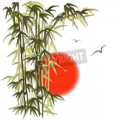 Naklejka Zielony bambus na tle słońca