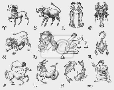 Naklejka Zodiac icons. Astrology horoscope with signs. Calendar template. Collection outline animals. Vintage style. Libra Scorpio Sagittarius Capricorn Aquarius Pisces. Aries Taurus Gemini Cancer Leo Virgo.