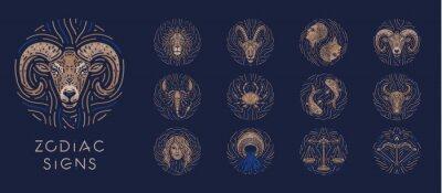 Naklejka Zodiac signs on dark background
