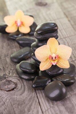 Naklejka Żółte Moth orchidee i czarne kamienie na wyblakły pokładzie