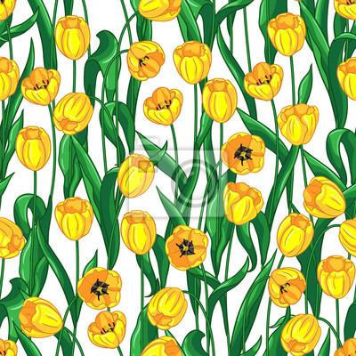 Żółte tulipany wzór