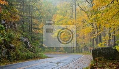 Naklejka żółty drogowych spadek scenic