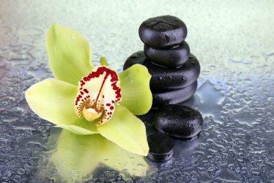 Naklejka Żółty tropikalny kwiat orchidei i kamienie spa