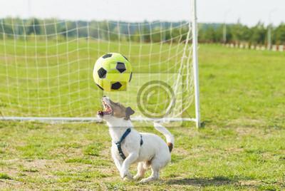 Naklejka Żonglowanie piłkarz