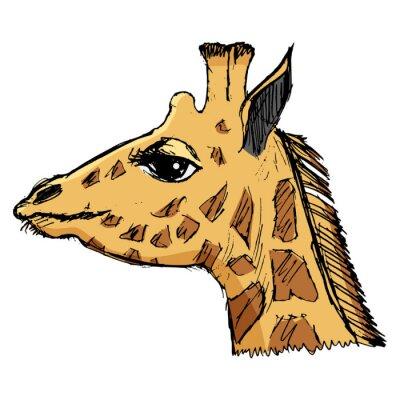Naklejka żyrafa, ilustracja przyrody, zoologiczny, przyrody, zwierząt z Afri