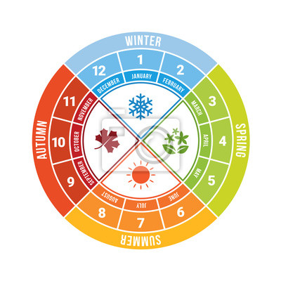 Obraz 4 season circle diagram chart with icon sign and month time vector design