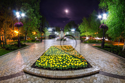 A beautiful night view of the street in Donetsk