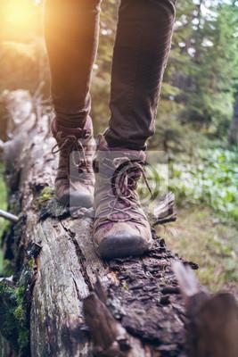 Obraz a hiking boots