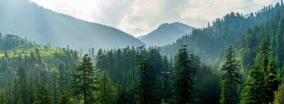 Obraz A mountain valley, Jibhi, Tirthan Valley, Himachal Pradesh, India