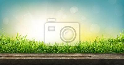 Obraz A natural spring garden background of fresh green grass with a bright blue sunny sky with a wooden table to place cut out products on.