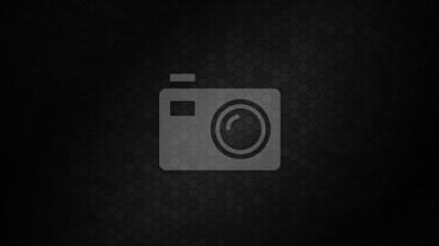 Obraz Abstract black texture background hexagon. Vector illustration.