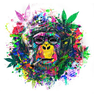 Obraz abstract colorful monkey background with funny face and cannabis
