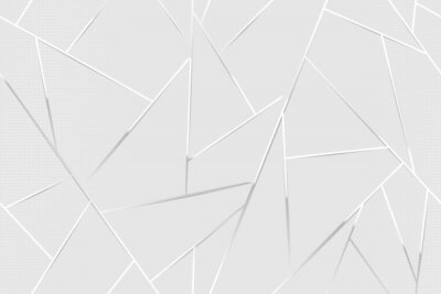 Obraz Abstract white chrome lines background