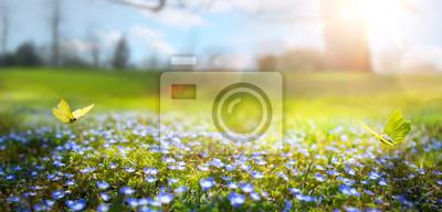 Obraz abstrakcyjny charakter wiosny Tło; wiosenny kwiat i motyl