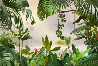 Obraz adorable background design with tropical palm and banana leaves, can be used as background, wallpaper