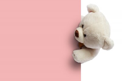 Obraz Adorable  teddy bear with empty space for commercial use