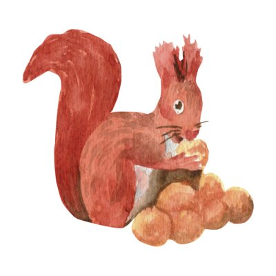 Adorable watercolor squirrel in trendy style. Funny, cute, hugge, hand drawn illustration for poster, banner, print, decoration kids playroom or greeting card.