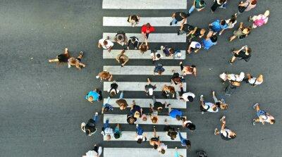 Obraz Aerial. Pedestrians on the zebra crosswalk. Top view from drone.