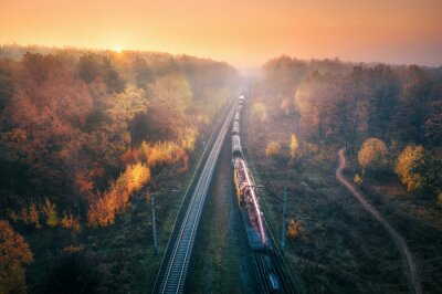 Aerial view of freight train in beautiful forest in fog at sunset in autumn. Colorful landscape with railroad, foggy trees, trail and orange sky. Top view of moving train in fall. Railway station