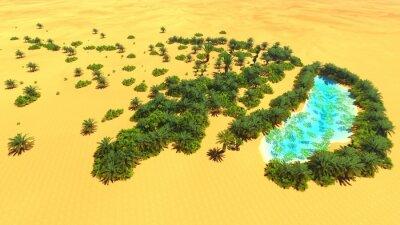 Obraz African oazy na Saharze