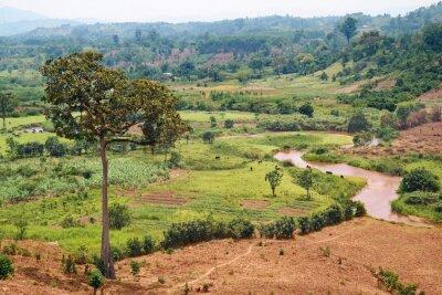 Obraz Afrykański krajobraz z rzeką