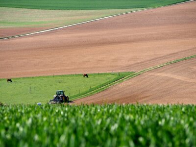 Obraz Agrarlandschaft