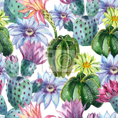Akwarela bez szwu kaktus wzór