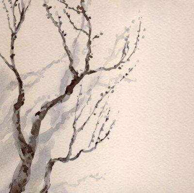 Obraz Akwarela. Gołymi gałęzi starego drzewa
