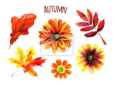 Akwarela jesień zestaw liści i kwiatów
