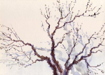 Obraz Akwarela krajobrazu. Nagie gałęzie drzewa